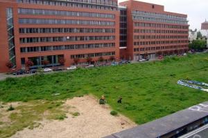 Blick auf das leere Nachbargrundstück und ver.di
